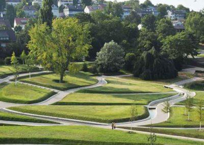 Offener-Studienauftrag-Waldacker-St-Gallen-4