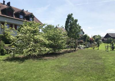 Privatgarten, Hettlingen