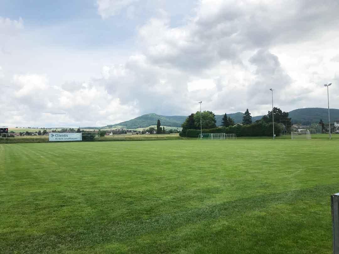 Naturrasen vs Kunstrasen - Beispiel Sportplatz Neunkirch